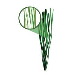 Фибриллированная искусственная трава